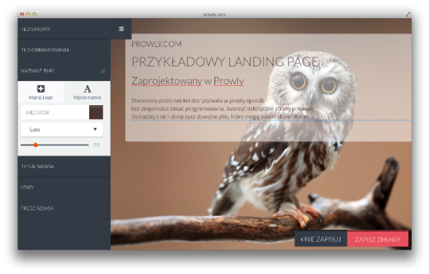 Prowly_widok landing pages